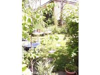 SWAP! 1 BED FLAT with OWN GARDEN-KENTISH TOWN FOR YOUR 1 BED OWN GARDEN FLAT-LOWER/UPPER/GROUND ONLY