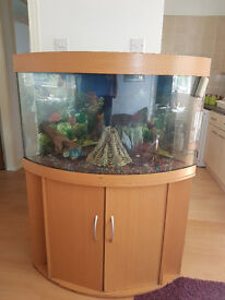 JUWEL TRIGON CORNER FISH TANK AND STAND FOR SALE,,FULL SET UP