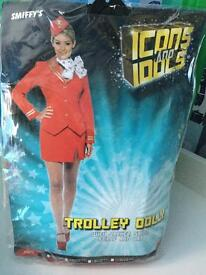 Fancy dress air hostess outfit
