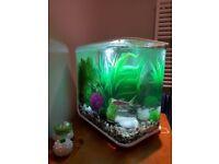 BiOrb Flow Fish Tank For Sale - 30 litre (white)