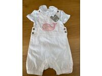 Selection of baby girl clothes