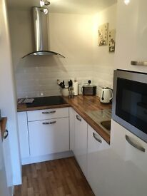 Newly Refurbished, Modern 1 Bedroom Apartment, Fully Furnished, Central Location, Available 15/03/17