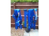 SAMCO FULL RACE HARNESS BLUE VERY NICE CONDITION