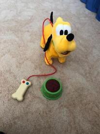 Walking Pluto the dog