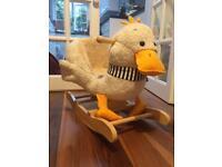 Duck rocky