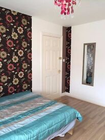 Double Room, Beautifully Decorated and Furnished, Available in Knowle