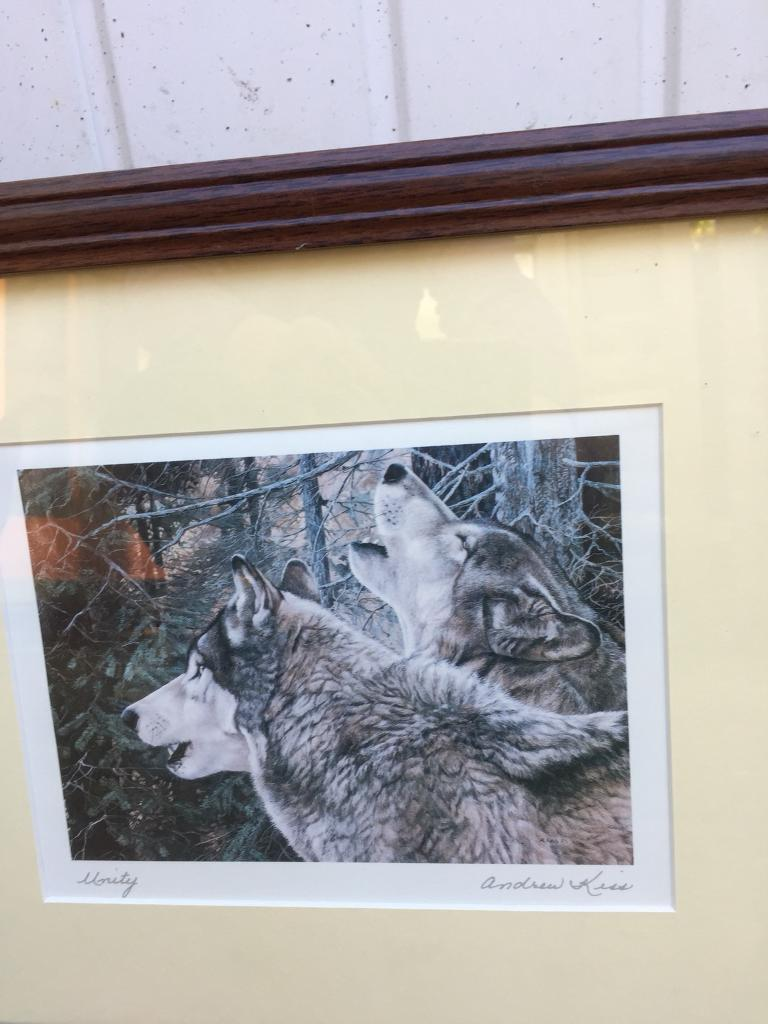 Wolves and Bears prints in frame