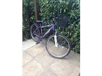 Apollo Twilight Mountain Bike
