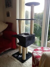 Cat Climbing Frame - brand new