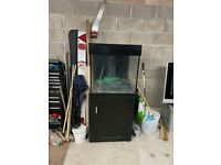 Fish Tank c/w Black cabinet , Lid, and Filtration System