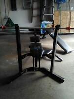 Exercise work bench
