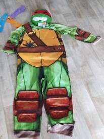 Ninja turtle dressing up costume