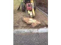 Stumpblasters - tree stump & root removal
