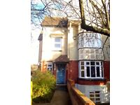 Bright and spacious one bed on quiet road