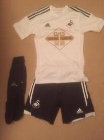 Swansea kit