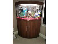 Jewel Trigon 190 Aquarium with extras