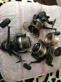 shimano big pits lovely reels 3 them and two shallow spalls ' great for sea - carp fishing