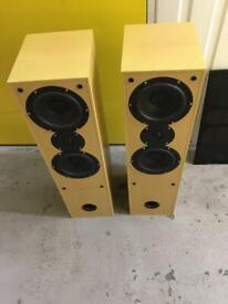 Aural envelope ex300 floor standing speakers