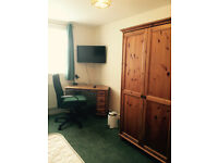 Large single room to let !