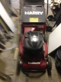 Harry petrol lawn more