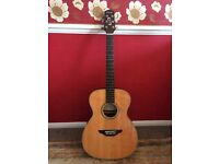 Fairclough Thyme Electro Acoustic guitar