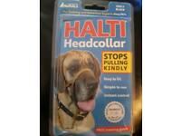 halti head collar size 5 stops dogs pulling
