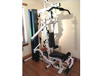 Body Solid Bi-Angular Multi-gym £600