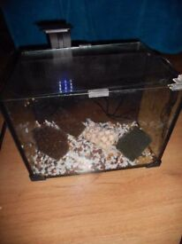 **HALOGEN LED LIGHTING FISH TANK WITH EXTRAS** CHEAP@ £40