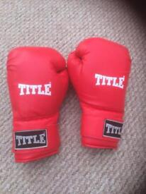 Title Boxing Gloves L