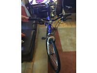 MuddyFox Mountain/Hybrid Bike Blue