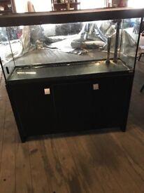 Fish tank fluval Roma 240