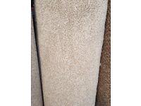 "13'9"" x 13'1"" carpet remnant."