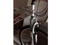 Mountain bike - white - £55