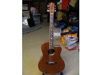 Lindo Feeling Electro/Acoustic Guitar with LCD Tuner XLR