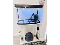 Fish Tank and Cabinet to sell