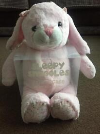 Bnib teddy Xmas gift girls teddy