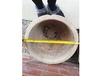 2 x Used Ceramic Pot Plants