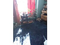 Blue shag rug for sale