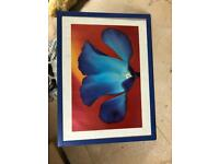 Amazing paintings for sale