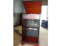 A Sony Suffolk HiFi Cabinet in Mahogany with Smoked Glass Front