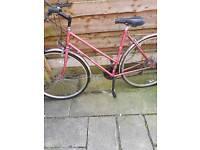 Dawes fleur bike adult