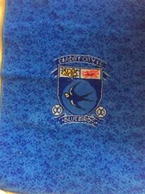 Cardiff city F.C. rug