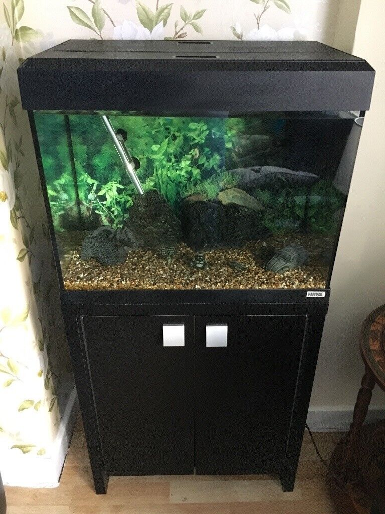 Fluval 90 with Stand & accessories