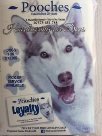 Dog grooming all breeds and temperaments