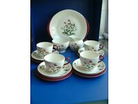 WEDGWOOD RUBY MAYFIELD 15PC TEA SET