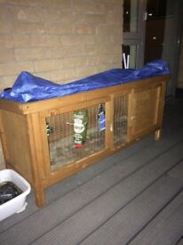 Gunnuie pig and rabbit hutch come s with few but not slot I need gone only few months old want £40