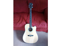 Tanglewood TW28SLNCE Spruce topped Steel string Cutaway Dreadnought guitar