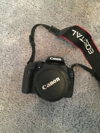 Canon 550D, 2 lenses and case