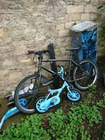 Carrera adult bicycles