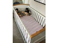 LOVELY STURDY COT/TODDLER BED FOR SALE
